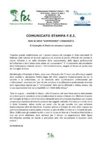 Comunicato stampa FEI 02.03-page-001