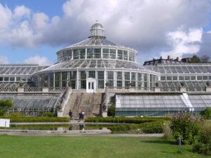 Orto botanico Copenaghen